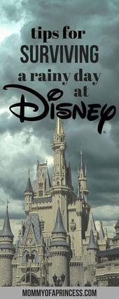 6 consejos y trucos para sobrevivir a un día lluvioso de Disney en Walt Disney World  Consejos y trucos de Disney
