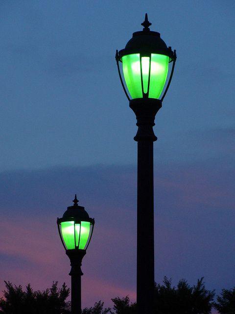 night lights   Morgaen Muñoz