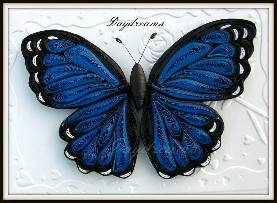 Нарисованные, открытки квиллинг бабочки