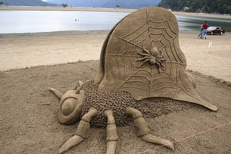 Really awesome sand sculptures. Not your everyday sandcastle