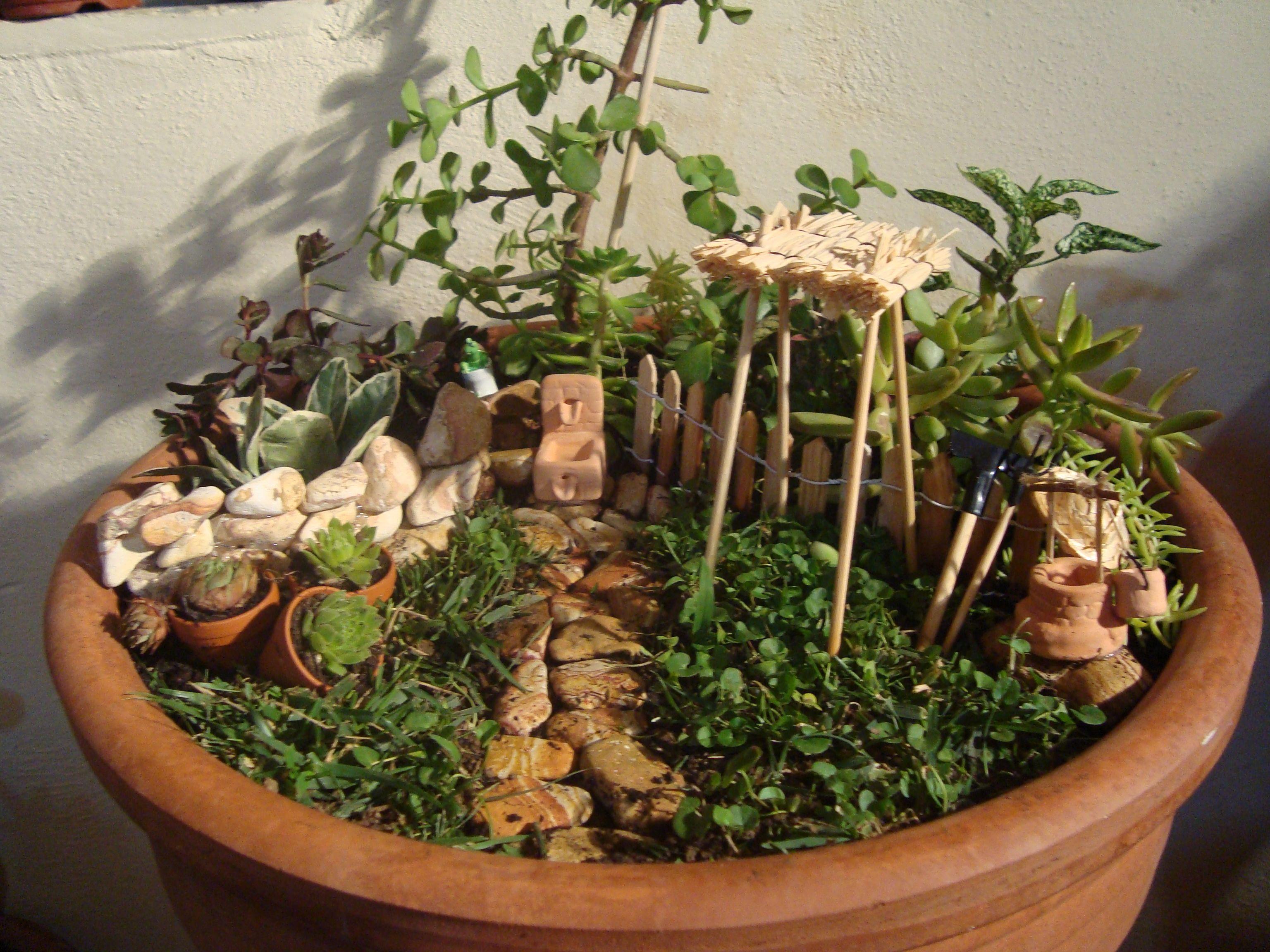 Small Gardensterrariagarden Ideasterrariumsyard