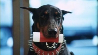 Dobermann film free download