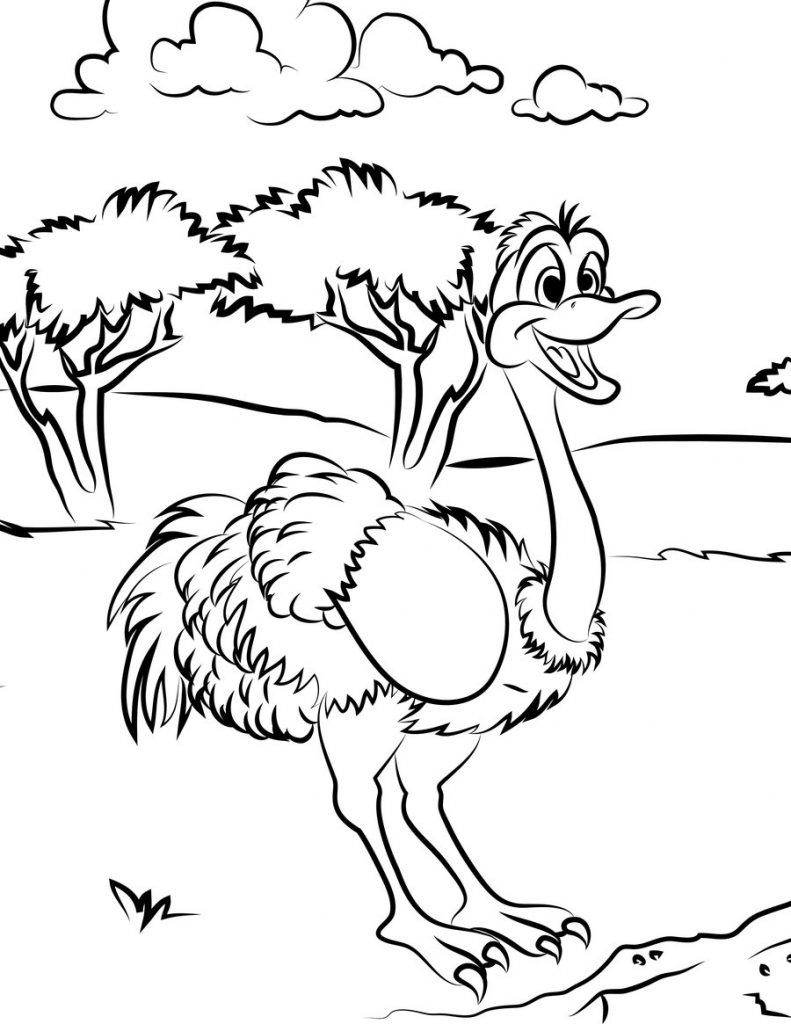 Free Printable Ostrich Coloring Pages For Kids dierendag