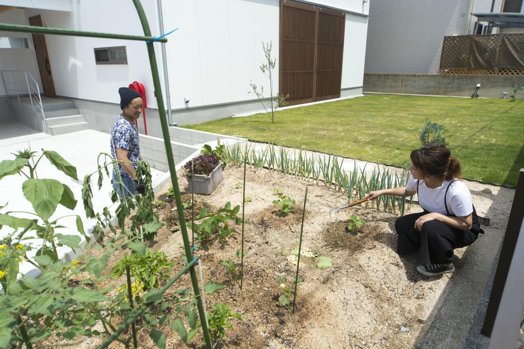 お庭で家庭菜園を楽しむ ご夫婦で一緒に育てて 会話も弾みますね どんな野菜ができるか楽しみです 注文住宅 マイホーム 新築 インテリア 住宅 家 建築 家づくり マイホーム計画 一戸建て デザイン 暮らし 自由設計 施工事例 住まい 家庭菜園 庭 外構 格子戸 芝生