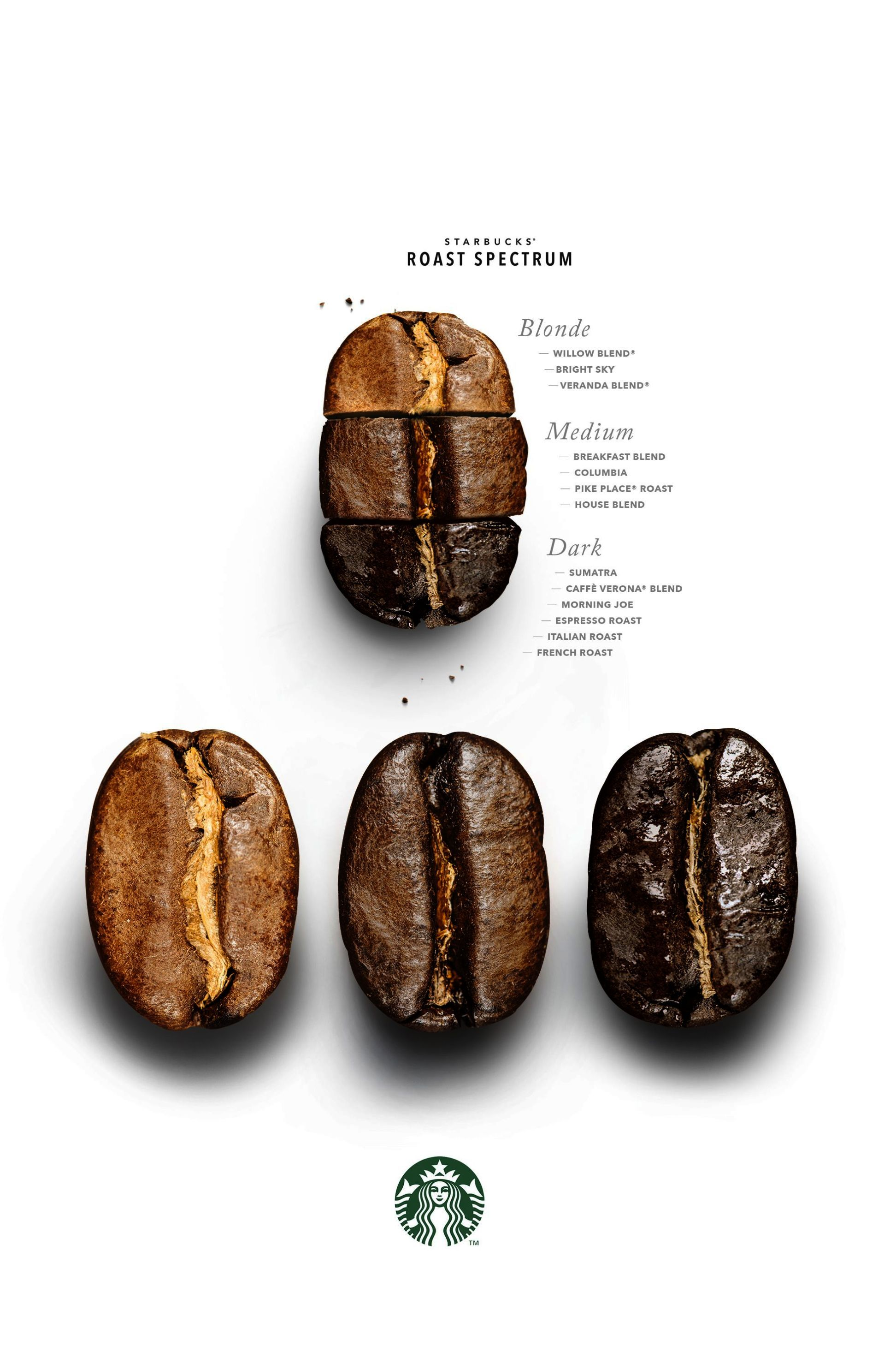 Type Of Coffee Bean Types Coffee Beans To Water Ratio