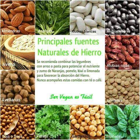 Mas alimentos ricos en hierro naturales y sin sufrimiento animal recetas y alimentaci n - Alimentos adelgazantes naturales ...