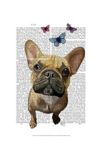 Art Print  Brown French Bulldog and Butterflies by Fab Funky   19x13in 2b092d102e2f