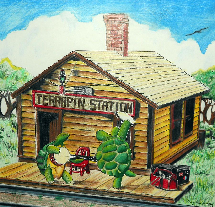 Recreation Of Terrapin Station Album Cover By The Grateful