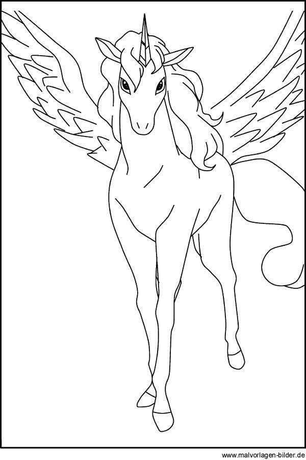 Pegasus Ausmalbild Ausmalbilder Unico