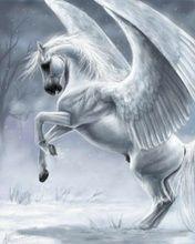 Fantasy Horse Screensavers Download Cool White Pegasus Wallpapers