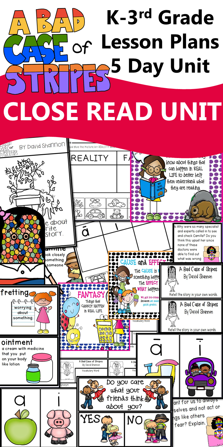 A Bad Case of Stripes Interactive Read Aloud Lesson Plans and ...