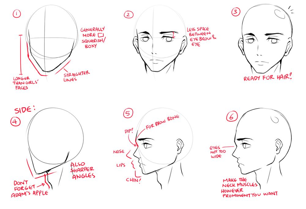 First Off Let S See What Makes A Typical Anime Male Character S Face 1 The Face Is Generally Made Of Straighter Li Lips Drawing Anime Drawings Guy Drawing