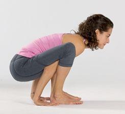 a challenging balance pose tittibhasana firefly pose  โยคะ