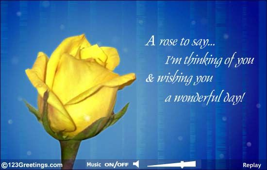 Beautiful Yellow Rose Means Friendship With Images Im