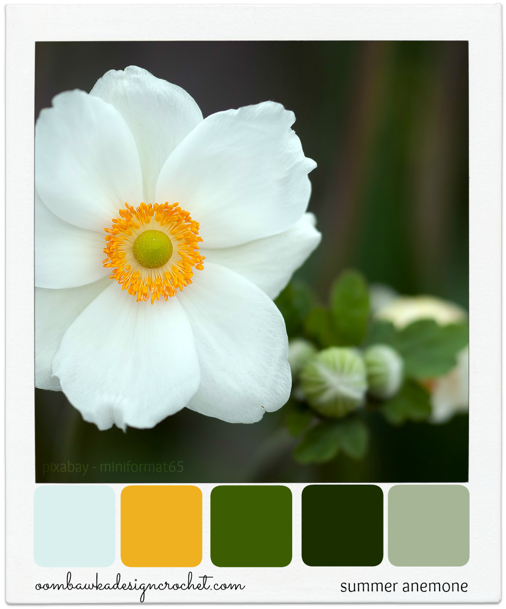 Summer anemone colour palette summer color inspiration and color white anemone flower summer outdoors nature flowers white beauty macro close up mightylinksfo Image collections