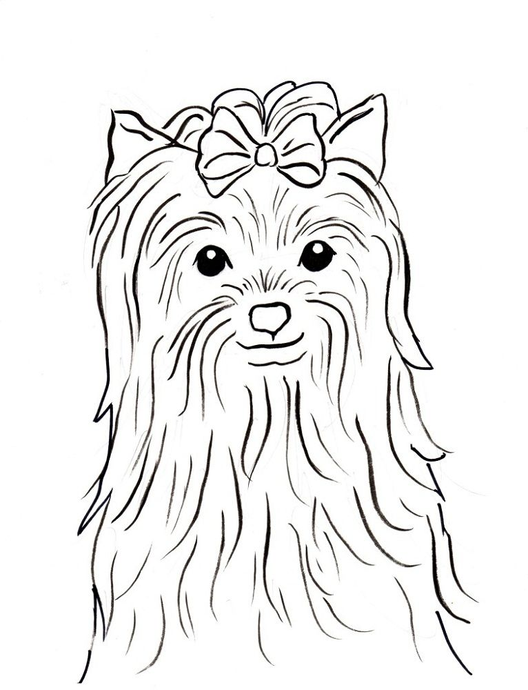 Yorkie Coloring Pages Cute Dog Coloring Page Puppy Coloring Pages Yorkie Dogs