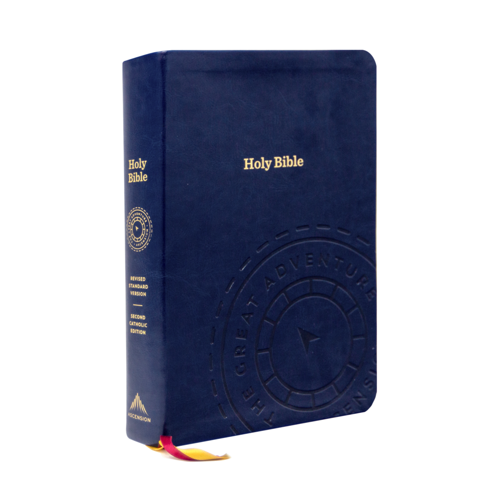 Holy Bible The Great Adventure Catholic Bible Catholic Bible Learn The Bible Bible In A Year