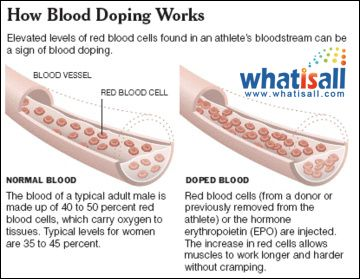 Blood Doping Process | fun ideas for OPE | Pinterest | Blood ...
