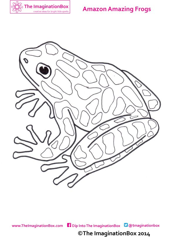 free printable frog activity sheet for kids - Frog Coloring Pages Free Printable 2
