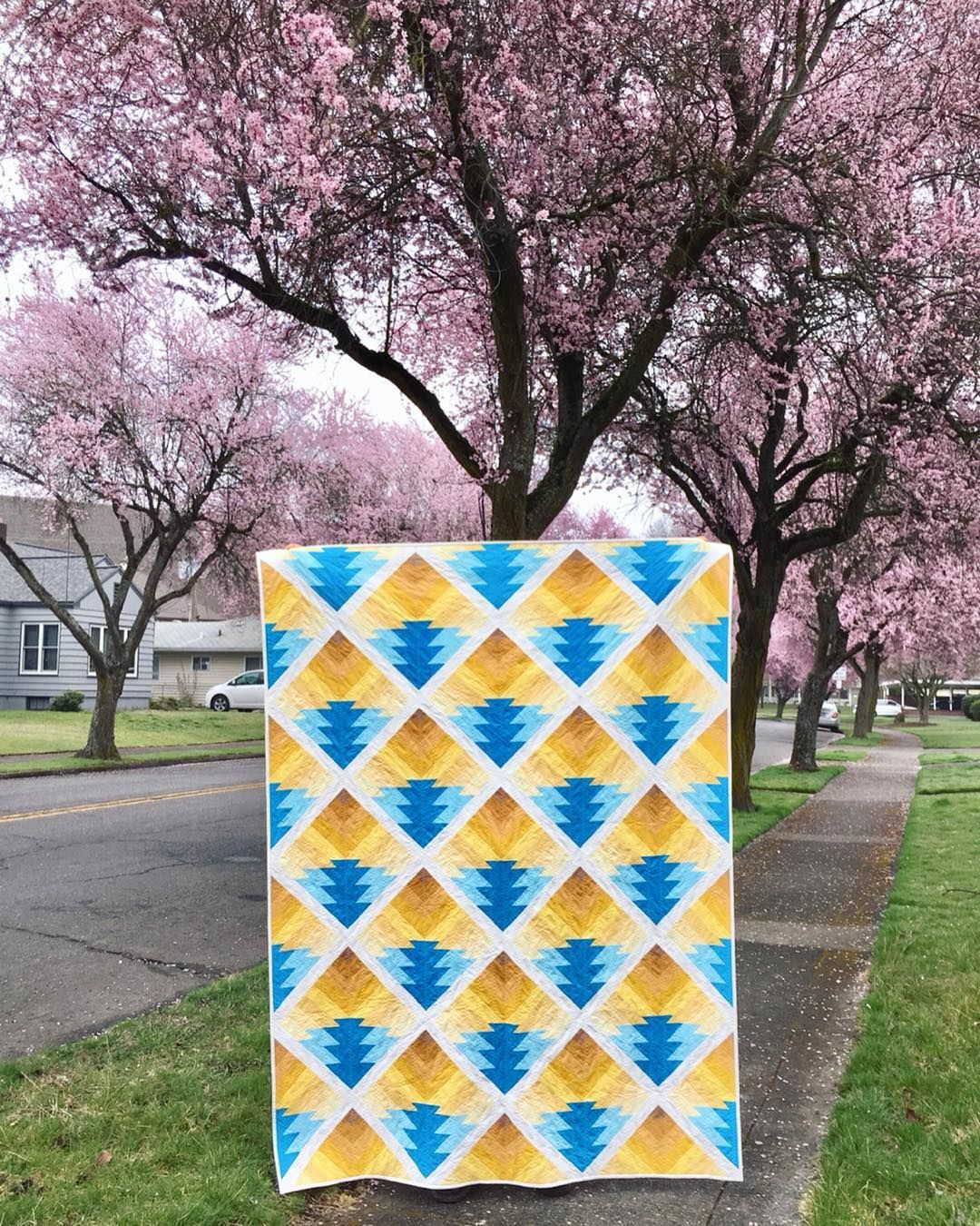 Maple Winds Quilts On Instagram These Cherry Blossom Trees Are Hands Down My Favorite Part Of Spring In The Pnw I Couldn T Let Their Short Blooming Period