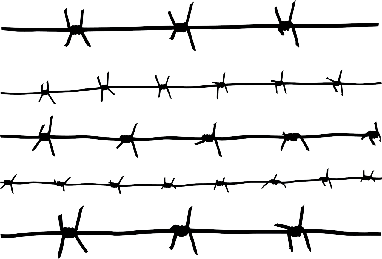 Barbwire Png Image Purepng Free Transparent Cc0 Png Image Library Barbed Wire Tattoos Barbed Wire Barbed Wire Drawing