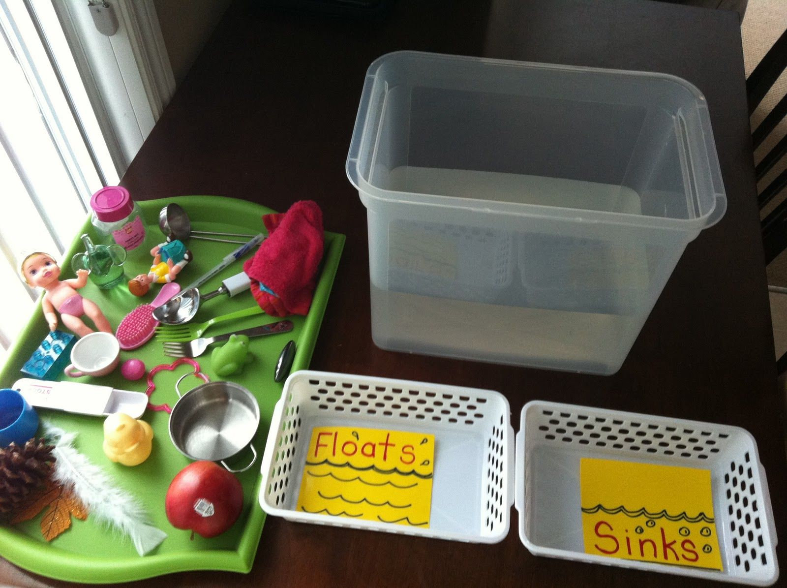 sorting objects by attribute sink vs float preschool preschool. Black Bedroom Furniture Sets. Home Design Ideas
