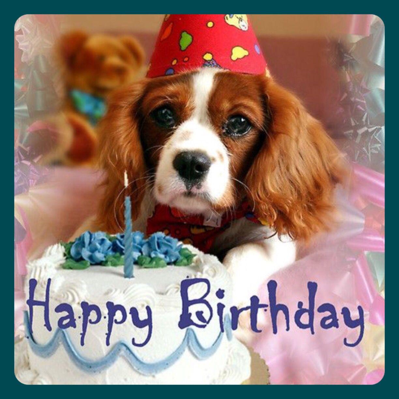 Pin By Grammie Newman On Birthday Pinterest Happy Birthday