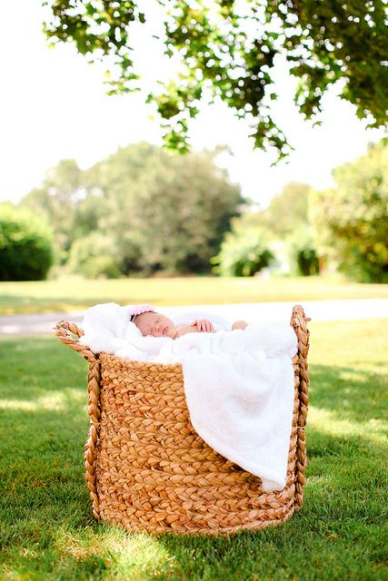 newborn photography, mandy mayberry photography