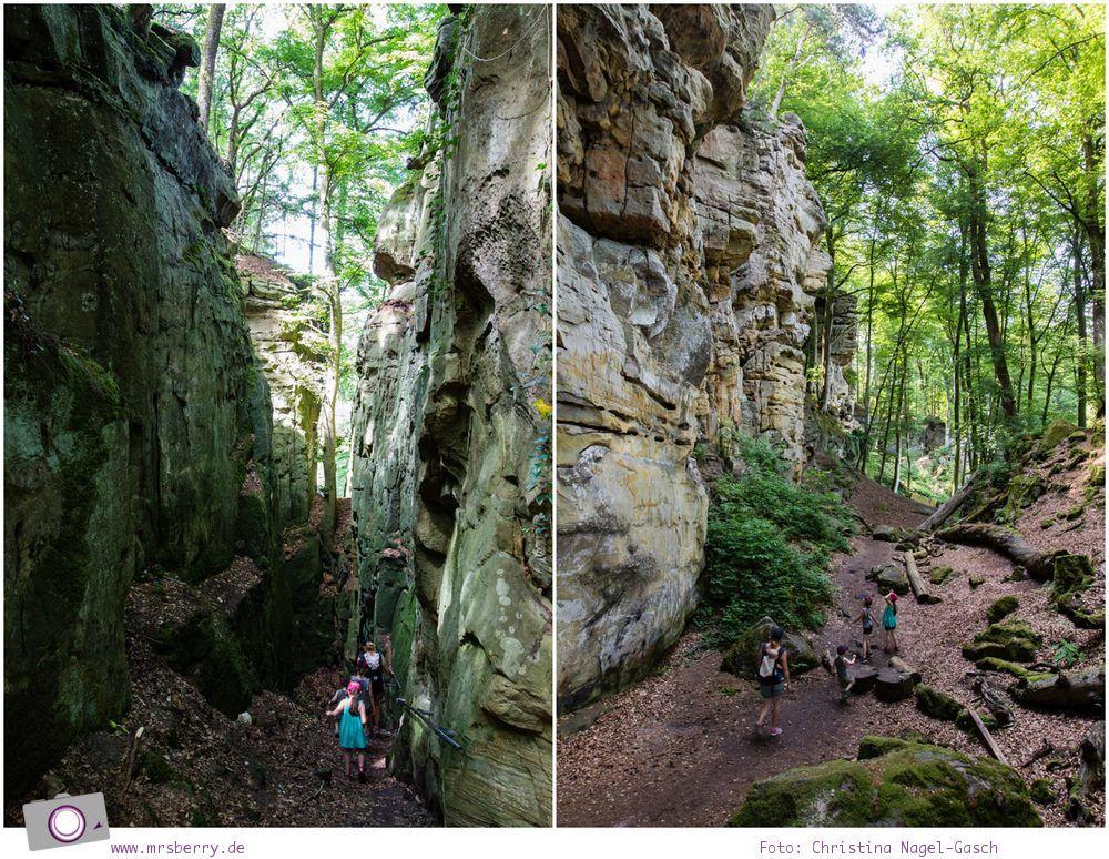 Klettersteig Pfalz : Mittelrhein klettersteig u deutsches wanderinstitut premiumweg