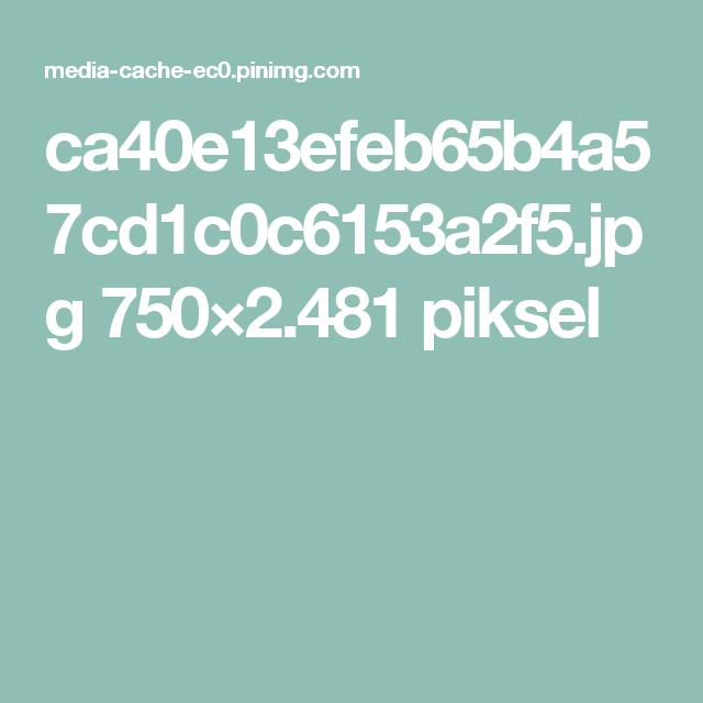 ca40e13efeb65b4a57cd1c0c6153a2f5.jpg 750×2.481 piksel