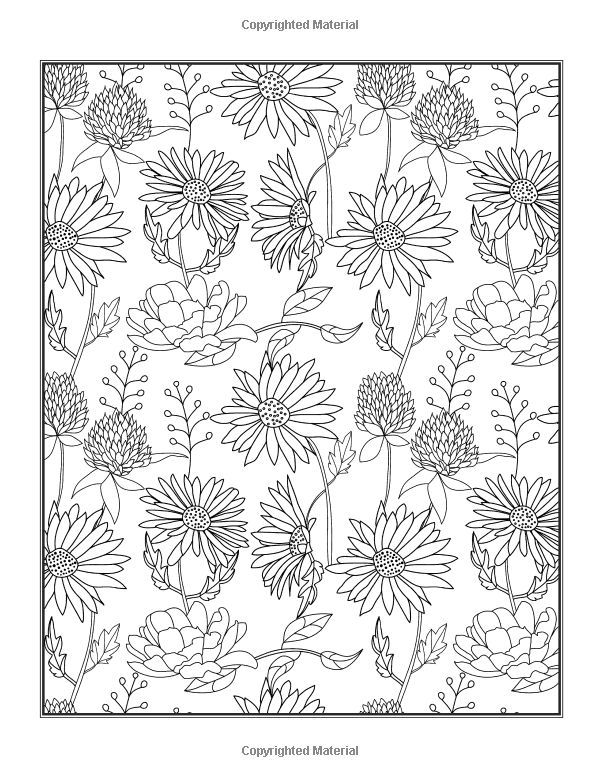Flowers Coloring Book Beautiful Pictures From The Garden Of Nature Chartwell Coloring Books Patience Coster Coloring Books Coloring Pages Colorful Flowers