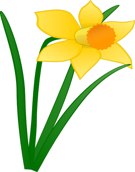 daffodil flower clip art daffodil 1 clip art at clker com vector rh pinterest com daffodil clipart no background daffodil clip art images