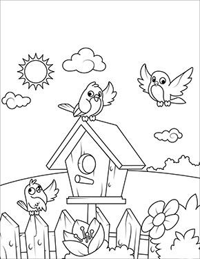 Ausmalbild Fruhling Vogel Am Vogelhaus Ausmalbilder Kindergarten Malvorlagen Ausmalbilder Fruhling
