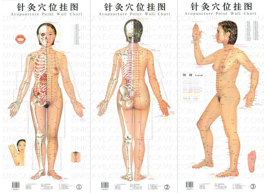 Google image result for httpsinicaveprodimagesblowup can acupuncture treat depression the alternative practice may be able to replace medication or alleviate its side effects read more on ccuart Gallery