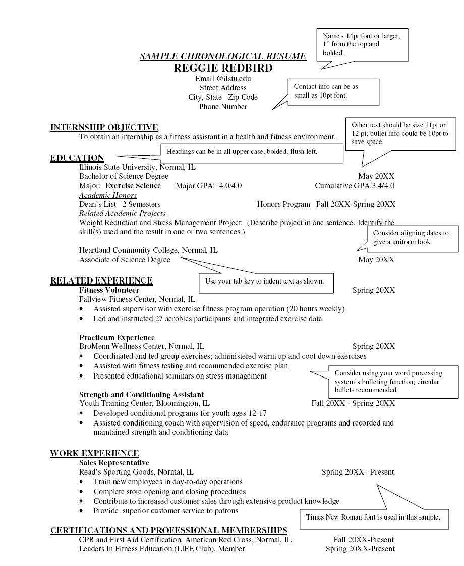 chronological resume outline