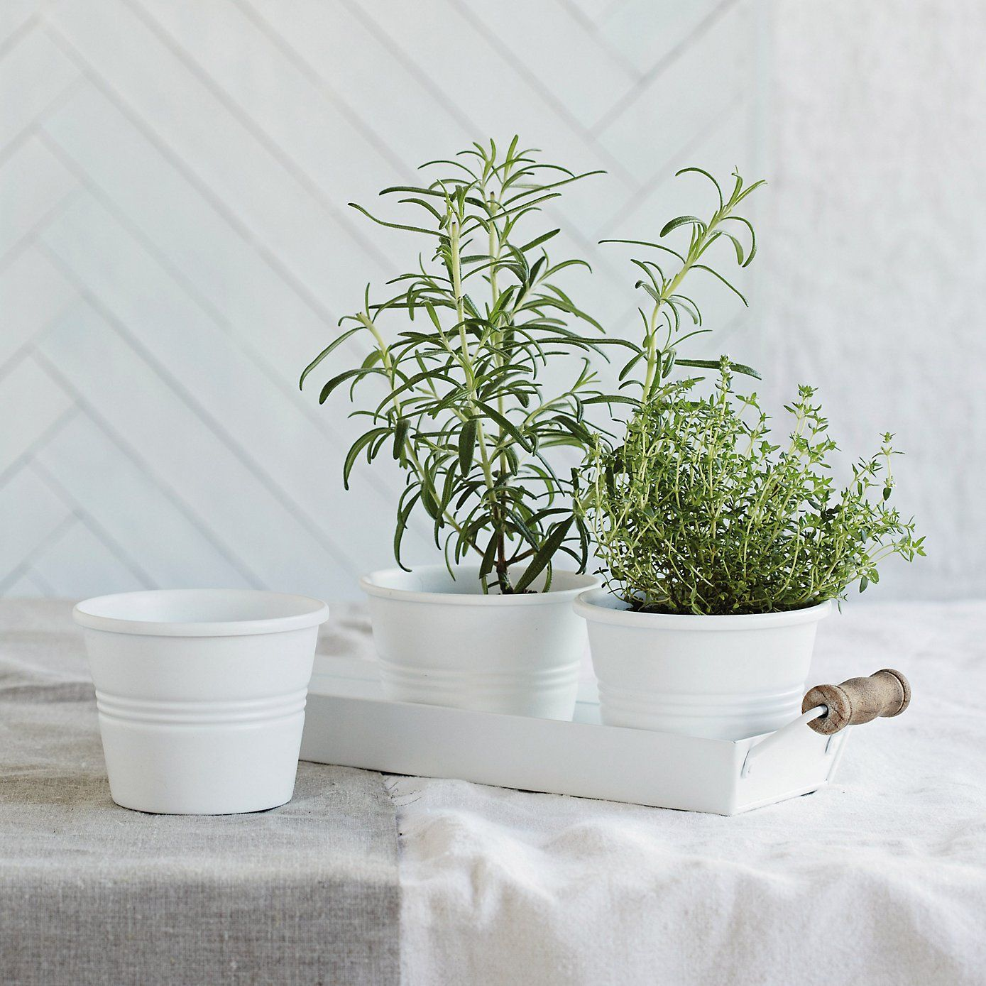Enamel Herb Pots with Tray | The White Company | Kitchen | Pinterest ...