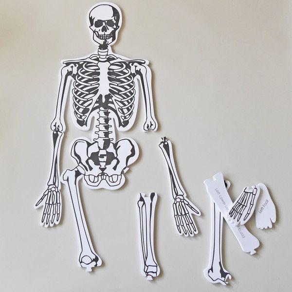 Skeleton Foam Floor Puzzle Foam Flooring Floor Puzzle Skeleton