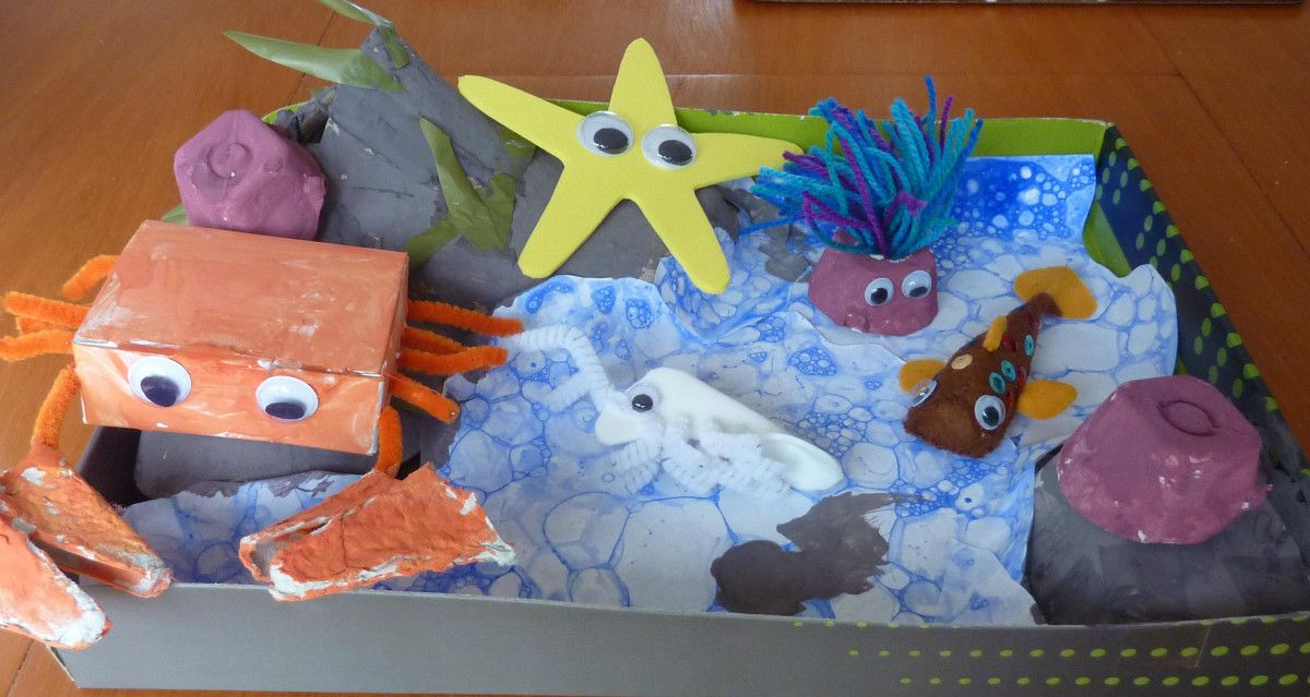 rockpool in a shoebox lid (With images) | Cardboard toys, Crafts ...