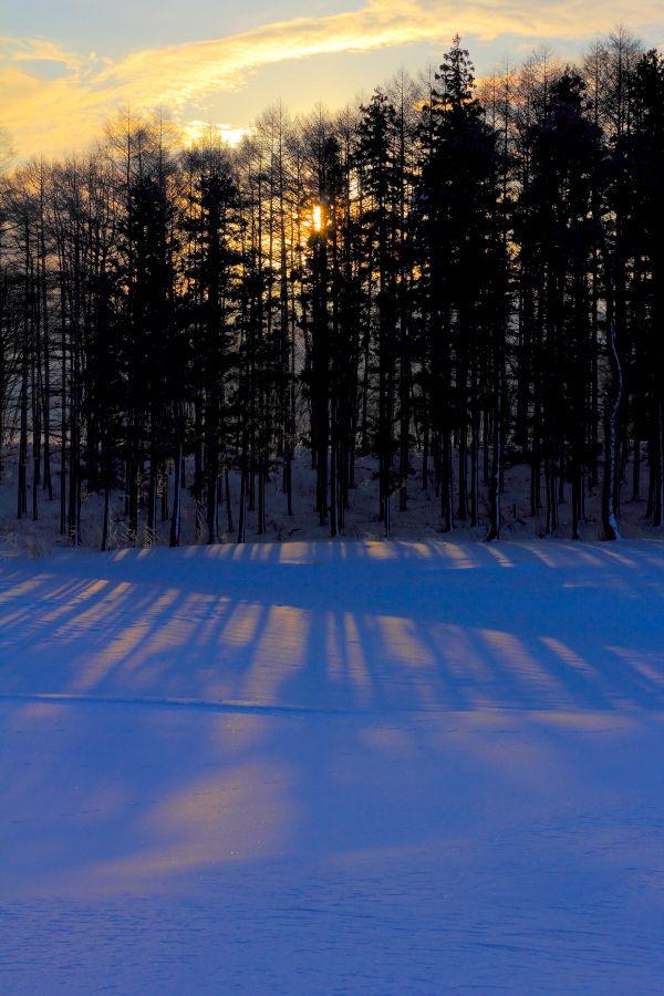 Impression of Sunrise ~ photo by Koji  Yamauchi on 500px