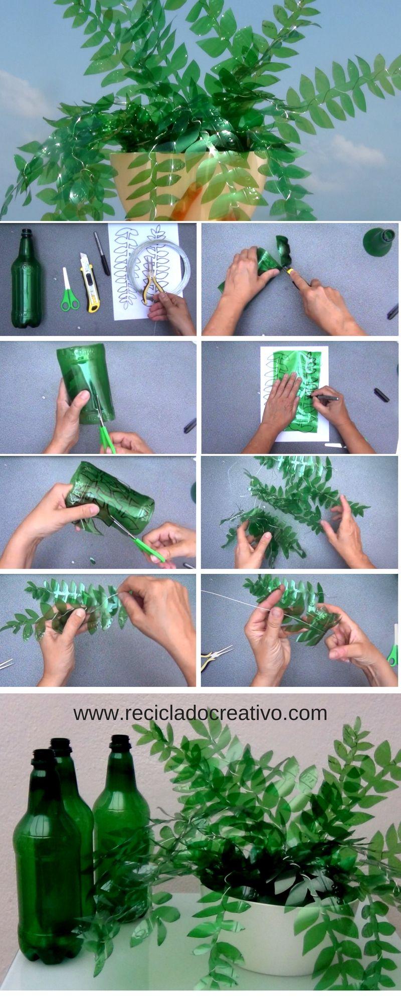 Paso A Paso Hojas Verdes Bon Botellas De Plastico Reciclar