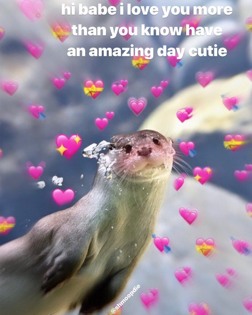 Hi I Love You Meme : Great, 😊😊, Memes,, Comedy, Memes