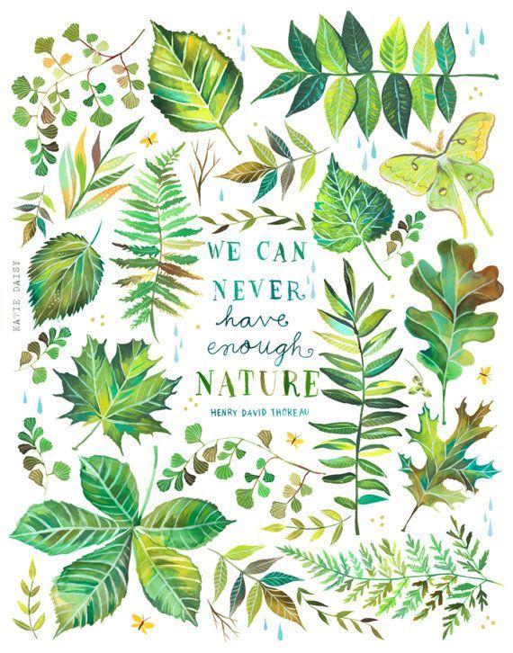 Nature   Thoreau quote   Outdoor art   Katie Daisy   8 x 10   11×14