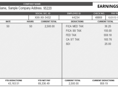 The Fine Print Reading Your Pay Stub Statement Template Free Checking Payroll Template