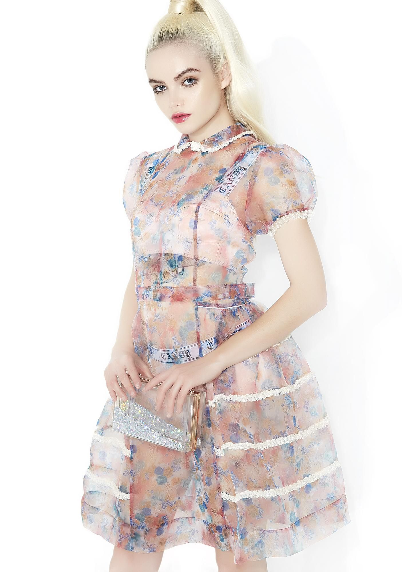 c5648a0a3b Sugar Thrillz Rococo Rose Sheer Dress these frills signal royalty
