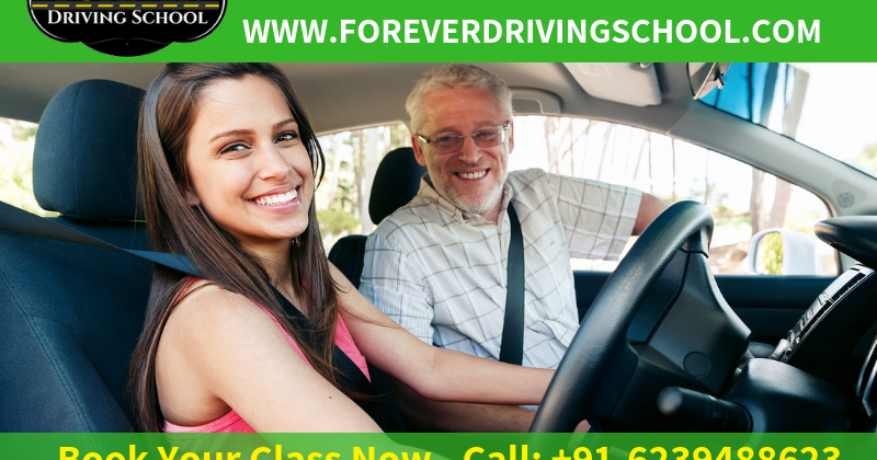 If You are looking for Driving School in 20c Sector