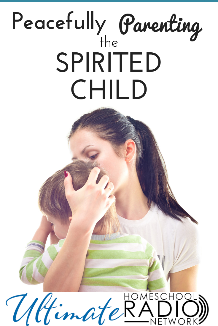 Practical Strategies For Parenting >> Peacefully Parenting The Spirited Child Women Faith Bloggers To
