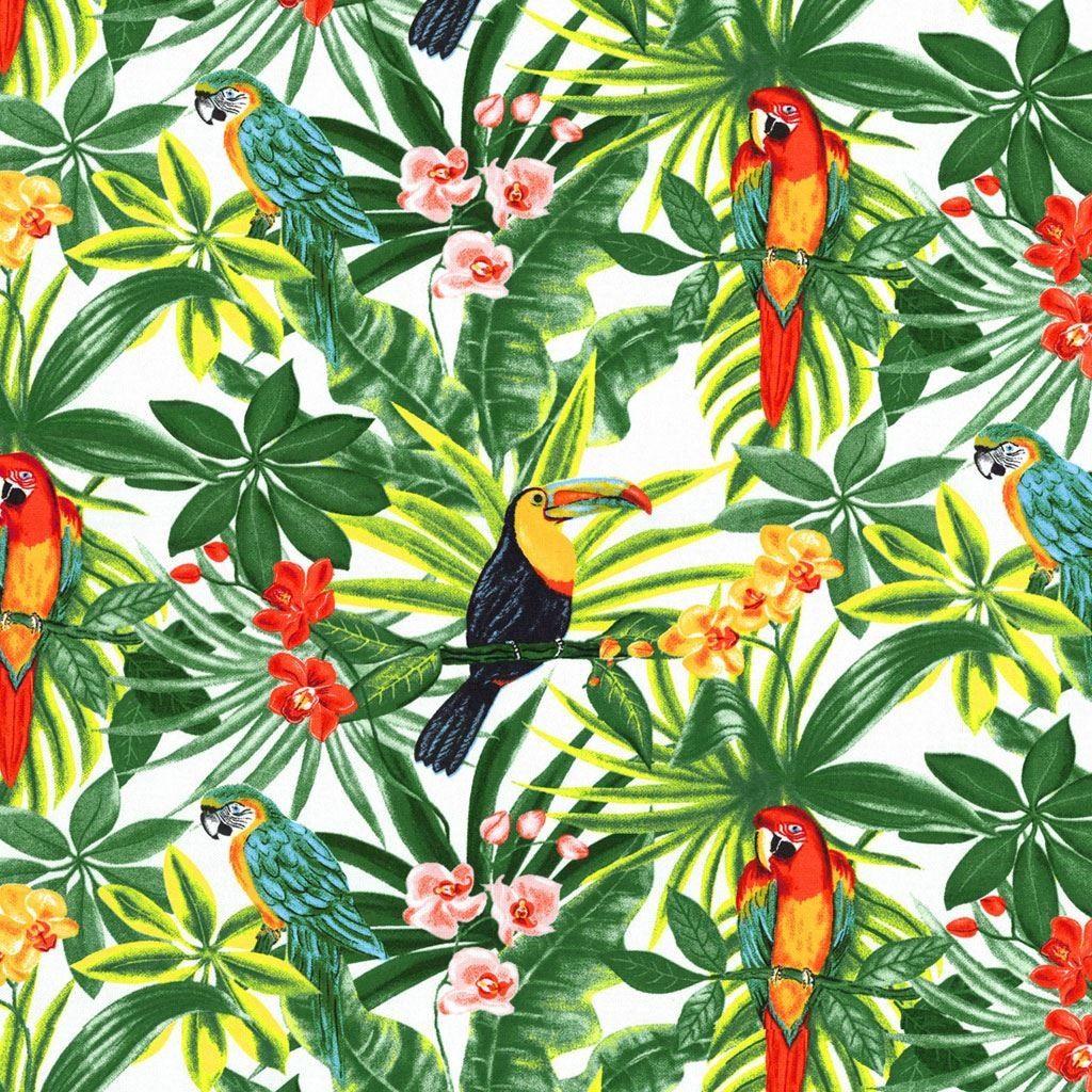 Tissu Bachette Exotique Tissus Maison Mondial Tissus Imagenes