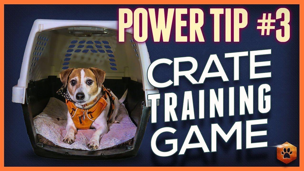 Dog power