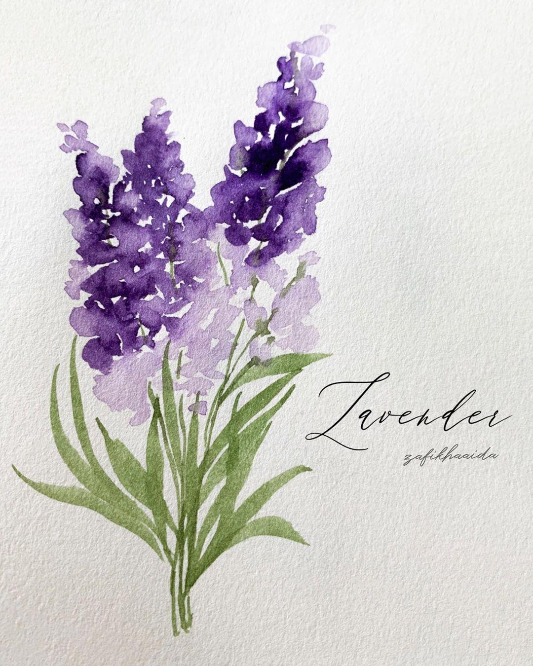 Lavender Artbyzafikha Tutorial Previous Post Paint Sennelier1887 Schm Watercolor Flowers Paintings Watercolor Paintings Tutorials Watercolor Art