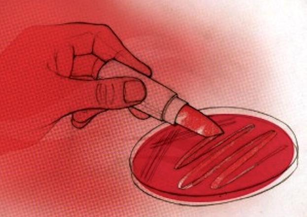 Revelan los cambios del catálogo microbiano vaginal.